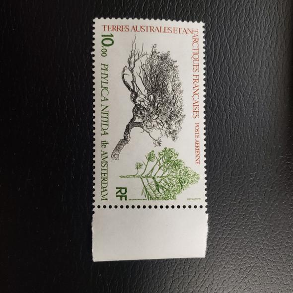 FRENCH ANTARCTIC C59 Airmail Flora  (1v)