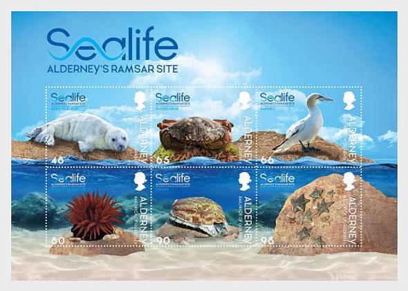 ALDERNEY (2021)- Sealife in the Ramsar Site Sheet of 6v- seal pup, gannet, crab, etc.