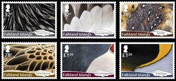 FALKLAND ISLANDS (2019)- -BIRD FEATHERS (6v)