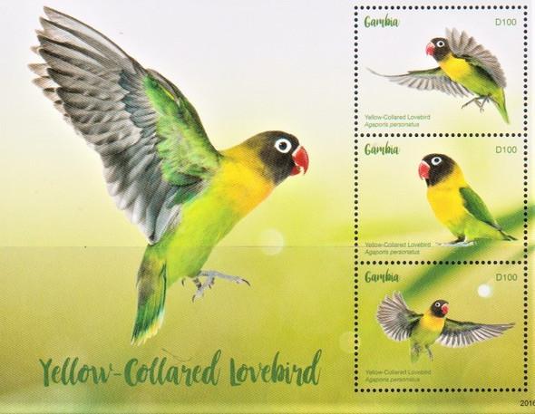 GAMBIA  (2021)-Tanzanian Love Birds Sheet of 3v & Souvenir Sheet