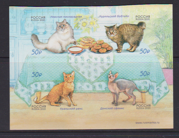 RUSSIA 2021)-CATS (4V)