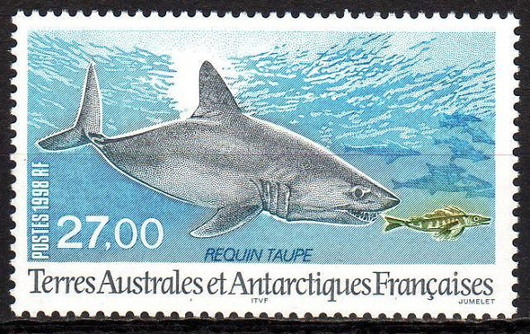 FR. ANTARCTIC (1998)- MOLE SHARK