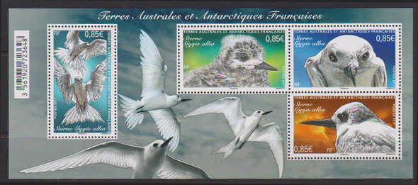 FR. ANTARCTIC (2017) - Terns- Sheet of 4