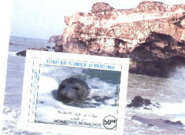 MAURITANIA (1966)- MONK  SEAL, SOUVENIR SHEET