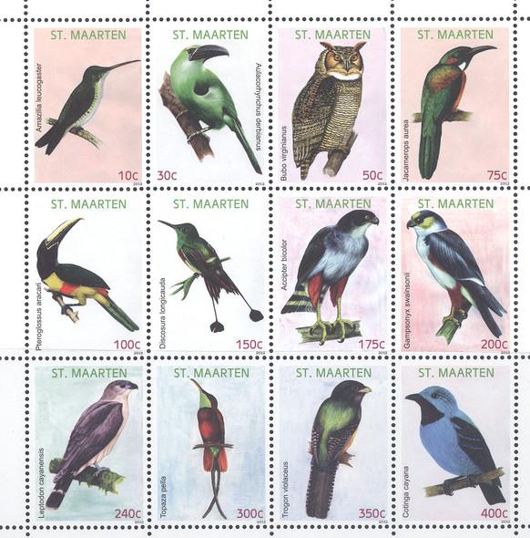 NETHERLANDS ANTILLES- ST MAARTEN Birds 2012 (12)