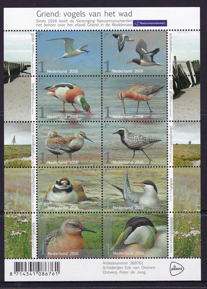 NETHERLANDS: Birds 2016- Sheet of 10- stern- shelduck- dunlin etc