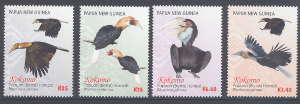 PAPUA (2016) - Kokomo Birds- Papuan Hornbill (4)