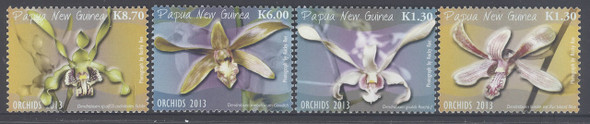 PAPUA- Orchids 2013 (4)