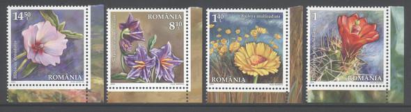 ROMANIA (2014): Desert Flora (4)