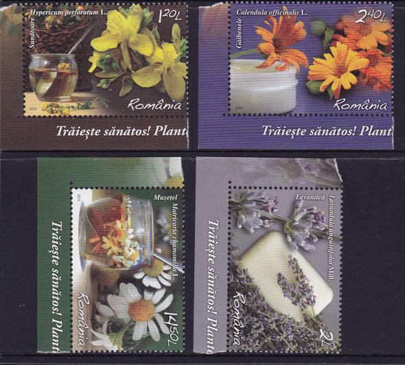 ROMANIA: Medicinal Plants 2015 (4)