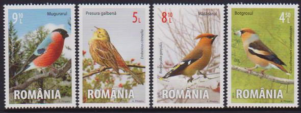 ROMANIA: Songbirds 2015 (4)