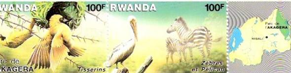 RWANDA (1986)- AKAGERA NATIONAL PARK--PELICAN & ZEBRA
