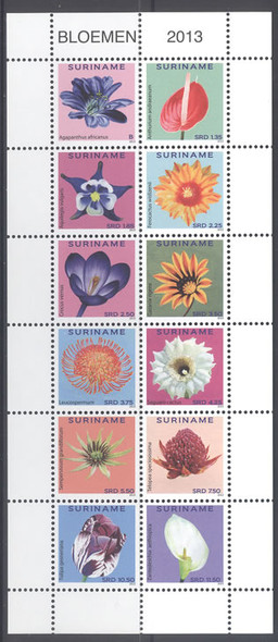 SURINAM- Flowers 2013- Sheet of 12