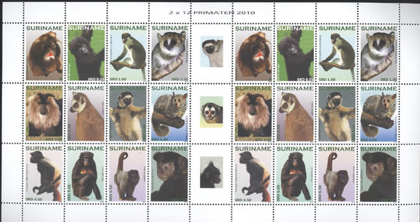 SURINAM- Primates 2010- mini-sheet of 2 sets