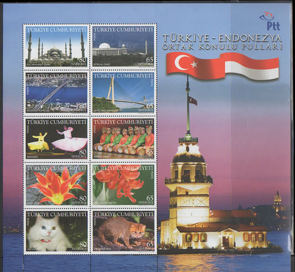 TURKEY (2008)- Joint w/Indonesia- Sheet of 10- cats- flowers- bridge