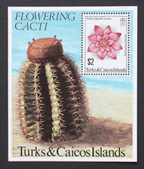 TURKS CAICOS (1975 ) Flowering cactus SS Sheet