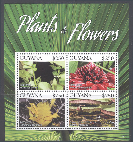 GUYANA: Flowering Plants 2015- Sheet of 4- Yerba Mate- Zebra Plant etc