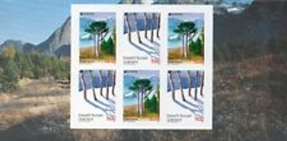 GREENLAND (2011) EUROPA Booklets ,Trees Complete
