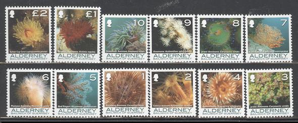 ALDERNEY(2006) - Coral Definitives (textured) (12)