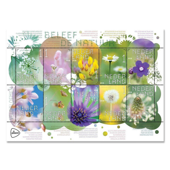 NETHERLANDS (2018)- WILDFLOWERS  SHEET OF 10 VALUES