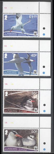 ASCENSION- WWF Bird- small design- red billed tropic bird (4)