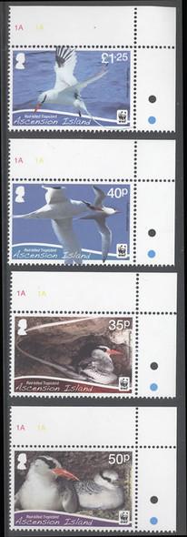 ASCENSION- WWF Bird- small design- red billed tropic bird (4)