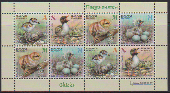 BELARUS (2018)- CHICKS & EGGS SHEET OF 8v