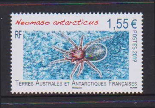 FR. ANTARCTIC TERR (2019)- SPIDER