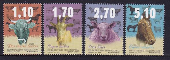 BOSNIA: SERB Farm Animals 2015- horse- sheep etc (4)