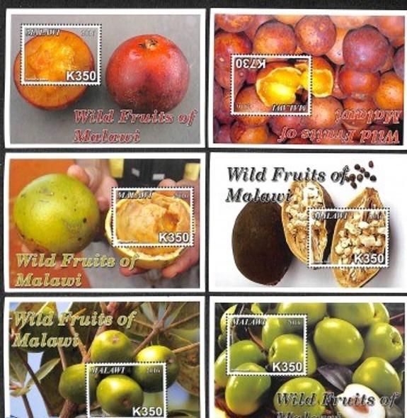 MALAWI (2016)- Wild Fruits Sheets (6)