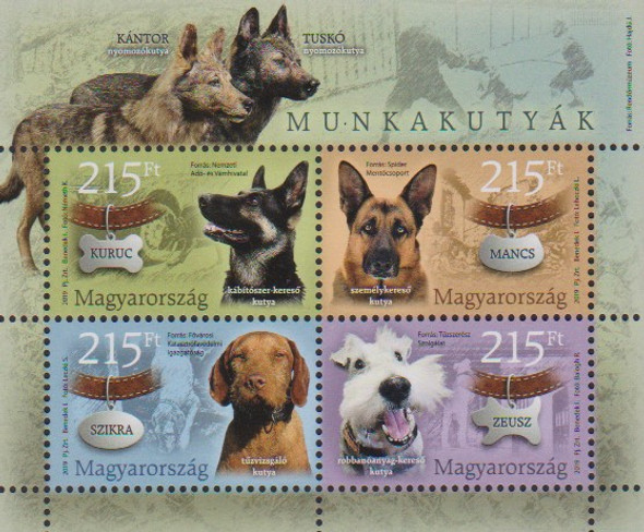 HUNGARY (2019)- PET DOGS (SHEET OF 4v)