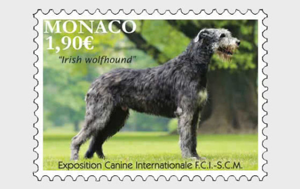 MONACO (2020)- International Dog Show