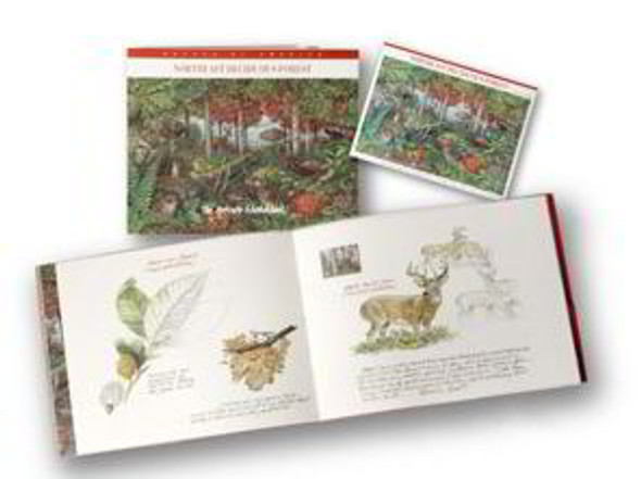 USPS (2005)- Northeast Deciduous Forest: The Artist's Sketch Book