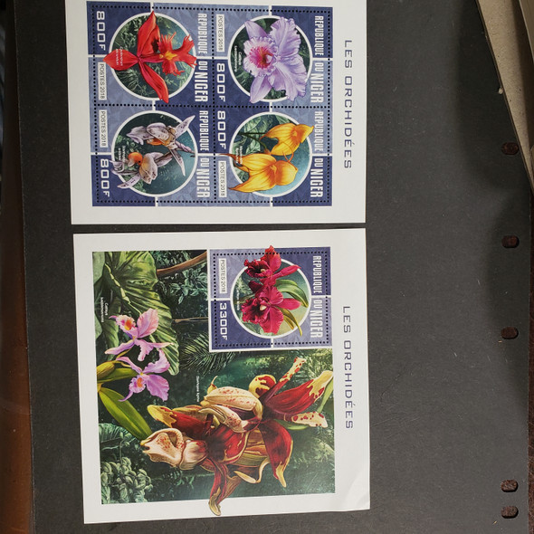 NIGER (2018) Orchids Sheet and SS LAST ONE