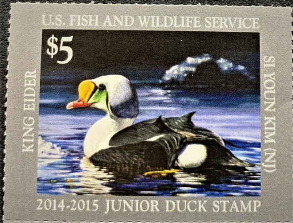 US (2014-5)- JUNIOR DUCK STAMP- KING EIDER $5- MINT