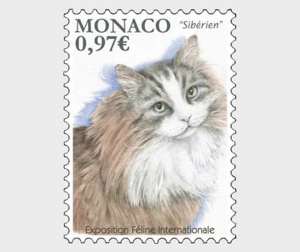 Monaco (2020)-  International Cat Show