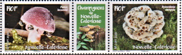 NEW CALEDONIA  (2020)-MUSHROOMS (2v)