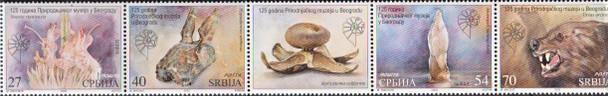 SERBIA  (2021)- Natural History Museum (4v)- Fossil, Bird, Flower