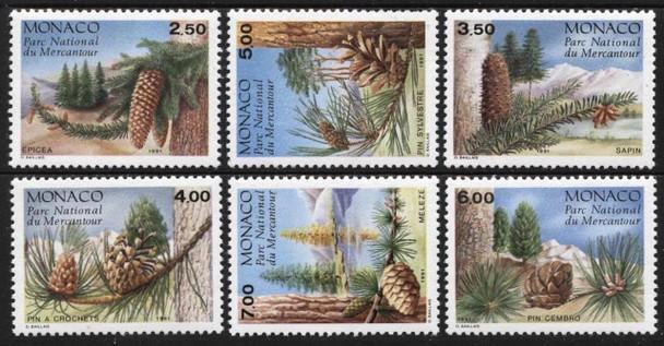 MONACO (1991)- Conifers, Mercantour NatIonal Park (6)