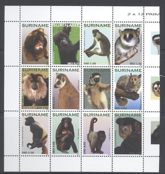 SURINAM- Primates 2010- lemur- gorilla- monkeys- galago etc (12)