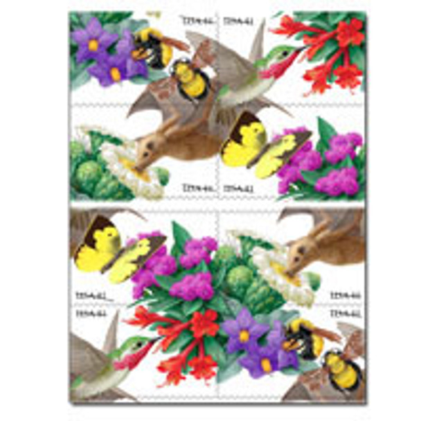 U.S.(2007) - Pollination Booklet (Bees & Flowers)