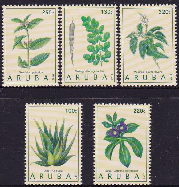 ARUBA- Plants 2016- aloe vera etc (5)