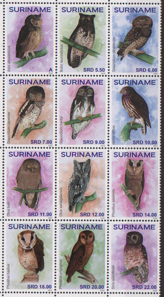 SURINAM (2018) Owls Block 12V