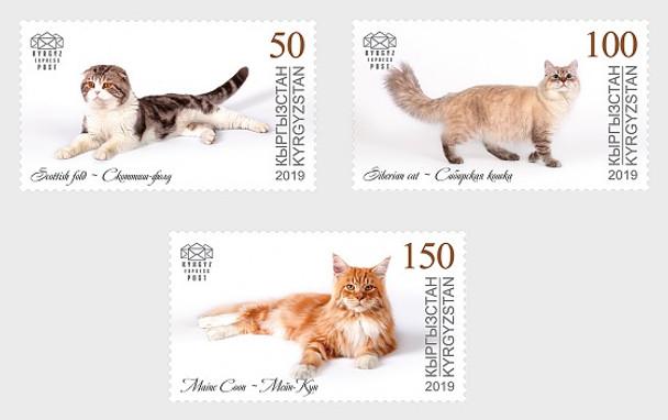 KYRGYZSTAN (2018)- DOMESTIC CATS  (3v)