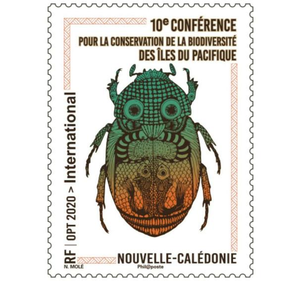 NEW CALEDONIA (2020)- Biodiversity- Beetle