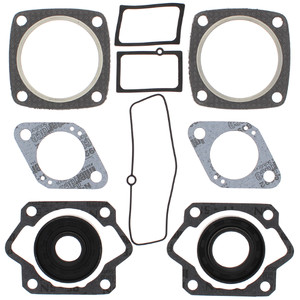 """Gasket Kit with Oil Seals For Ski-Doo TNT  18"""" track 440S 1971 440cc"""