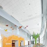 Looking Deeper on Optima 3150 Ceiling Tiles
