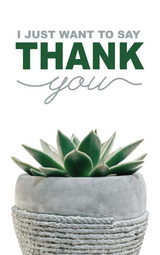 Thank You Plant