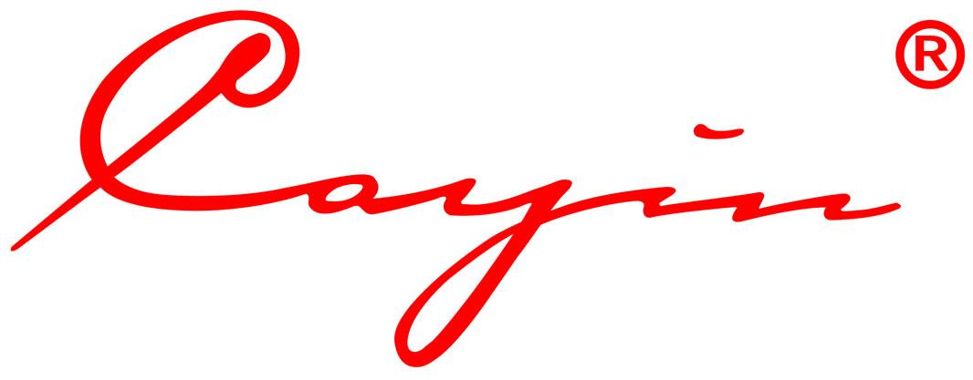 cayin-logo.jpg