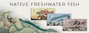 Native New Zealand Freshwater Fish